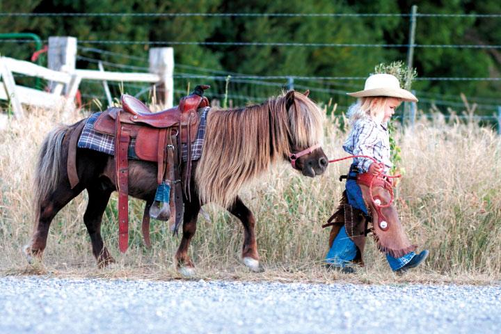 ballades-poneys