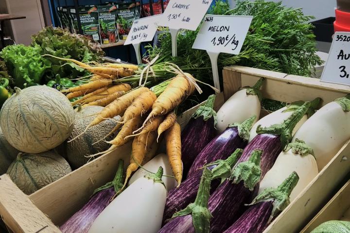 permaculture-récolte-fruits de légumes