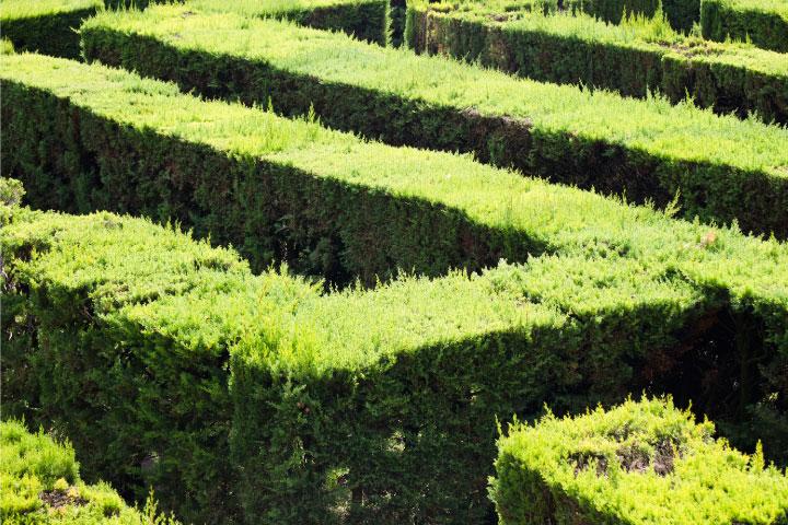 Labyrinthe-parc-ferme-magne