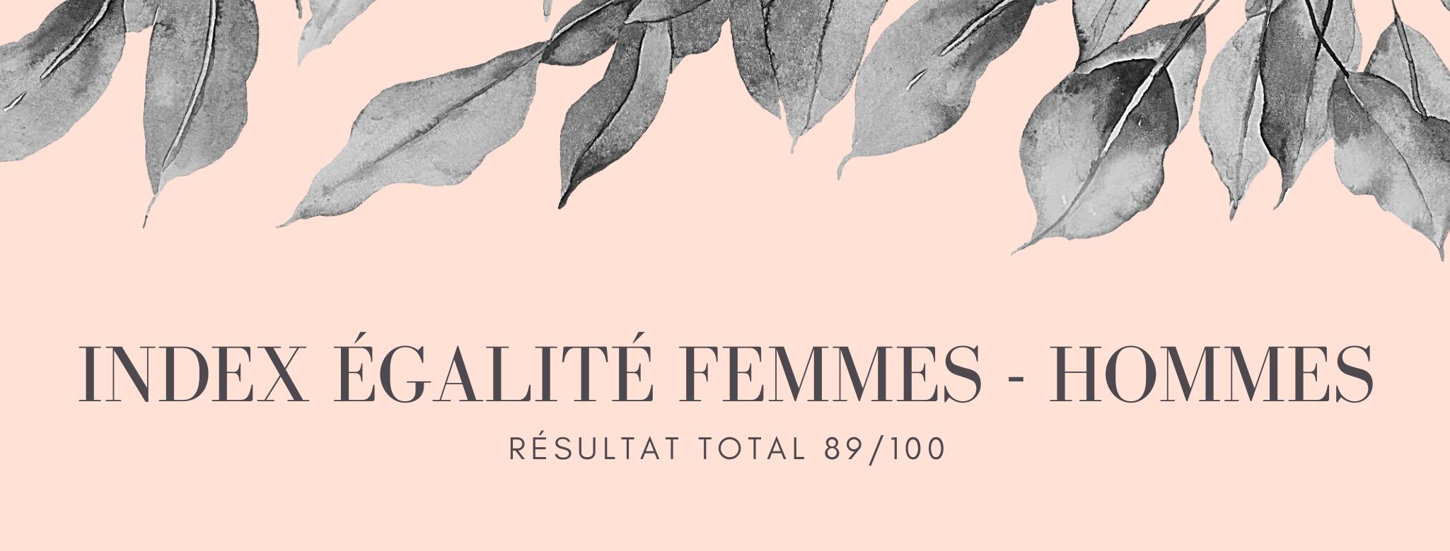 Index égalité femmes - hommes actualisée